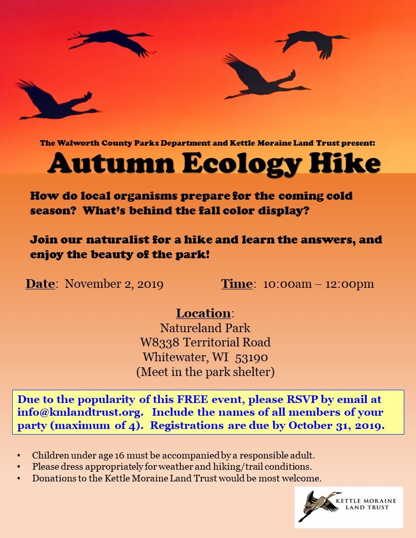 Autumn Ecology Hike